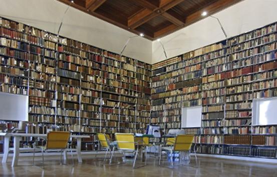 foto-biblioteca copia